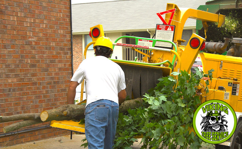 Wood Chipping | Wood Chips | Mulch Oshkosh WI - Viking Tree Service 4755 Old Oak Rd Oshkosh, WI 54904 ​920-203-8543